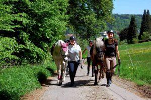 Reiten und Spaziergänge mit Pferden in Pforzheim